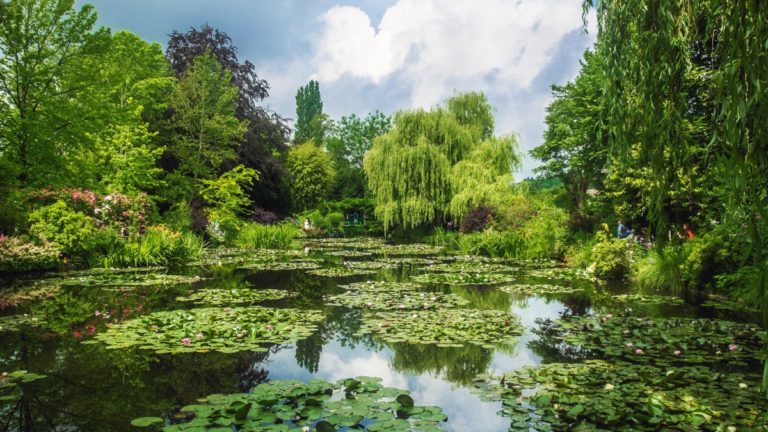 giverny | france | claude monet | monet | water lilies | art | impressionists | impressionism | bwd vacations