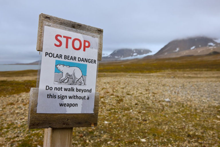 nordkapp   ross island   rossøya   svalbard   norway   midnight sun   travel   the man in the front seat   bwd vacations